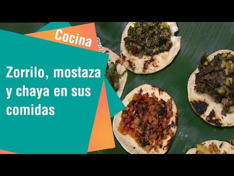 Zorrillo, mostaza, chicasquil y chaya para incluir en sus comidas   Cocina