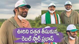 Rebel Star Prabhas Adopts 1650 Acres Of Forest Land | ఊరిని దత్తత తీసుకున్న ప్రభాస్ | IG Telugu - IGTELUGU