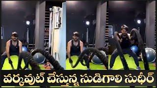 Sudigali Sudheer Heavy Gym Workout Video | వర్కవుట్ చేస్తున్న సుడిగాలి  సుదీర్ | IG Telugu - IGTELUGU