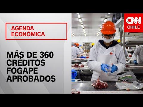 Agenda Economica | Pdte. Asociación de Bancos se refiere a la entrega de créditos Fogape
