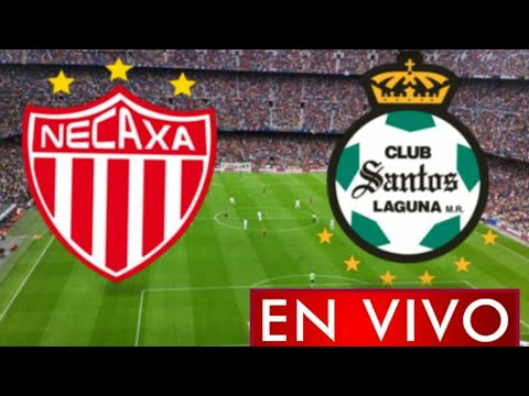 Donde ver Necaxa vs. Santos en vivo, por la Jornada 1, Liga MX 2021