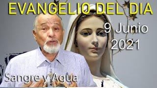 Evangelio Del Dia de Hoy - Miercoles 9 Junio 2021- Sangre y Agua