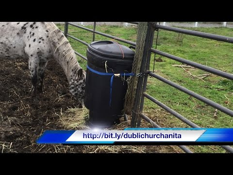 how to make a slow hay feeder for horses