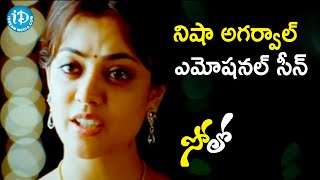 Nara Rohit Apologies to Nisha Aggarwal | Solo Movie Scenes | Prakash Raj | Srinivas Reddy - IDREAMMOVIES