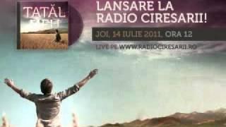 Fara-ncetare - Viorel Dejeu