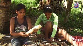 Comunidades indígenas de la cuenca del Amazonas en peligro por Covid-19