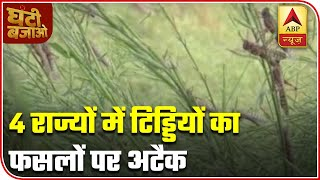 Locusts attack crops in 4 states | Ghanti Bajao - ABPNEWSTV