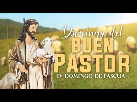SANTA MISA /  IV Domingo de Pascua - Jesucristo El buen Pastor