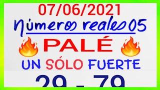 NÚMEROS PARA HOY 07/06/21 DE JUNIO PARA TODAS LAS LOTERÍAS...!! Números reales 05 para hoy....!!