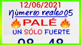 NÚMEROS PARA HOY 12/06/21 DE JUNIO PARA TODAS LAS LOTERÍAS...!! Números reales 05 para hoy....!!