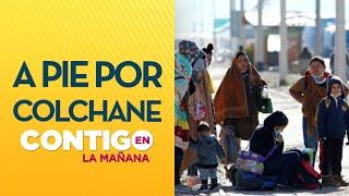 AGENCIAS FRAUDULENTAS: Crisis en la frontera por ingreso de inmigrantes  - Contigo En La Mañana