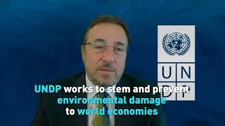 UNDP works to stem and prevent environmental damage to world economies
