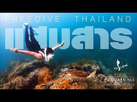 Freedive-Thailand-Samaesarn-ดำ