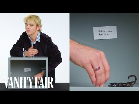 connectYoutube - Ross Lynch Touches a Scorpion, Hissing Cockroach & Other Weird Stuff   Vanity Fair