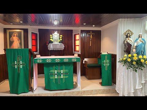 Eucaristía - Domingo de la XII Semana del tiempo ordinario - Padre Teófilo Rodríguez
