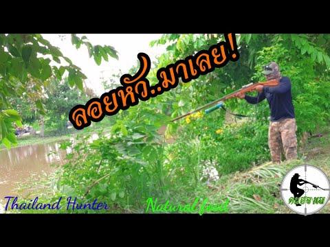 #SHOOT-FISH-ยิงปลาลอย..หน้าฝน-