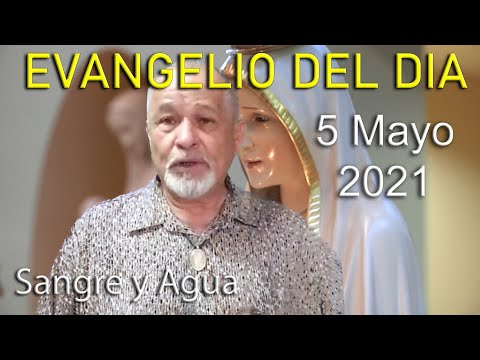 Evangelio Del Dia de Hoy - Miercoles 5 Mayo 2021- Sangre y Agua