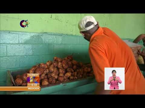 Muestran una imagen renovada diversos espacios públicos en la capital de Cuba