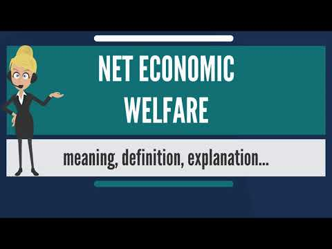 What is NET ECONOMIC WELFARE? What does NET ECONOMIC WELFARE mean? NET ECONOMIC WELFARE meaning