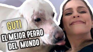 GUTI: EL MEJOR PERRO DEL MUNDO - Daniela Di Giacomo