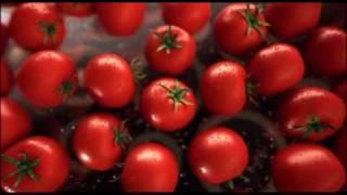 Leggos Tomato Paste 2010 Ad
