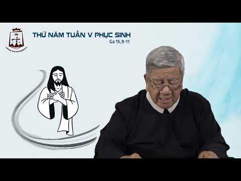 Suy niệm Lời Chúa Thứ Năm Tuần V Phục Sinh (Ga 15,9-11) - Lm Giuse Nguyễn Tiến Lộc CSsR 23/05/2019