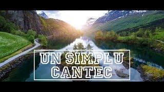 Un simplu cantec - Florin Dumitru