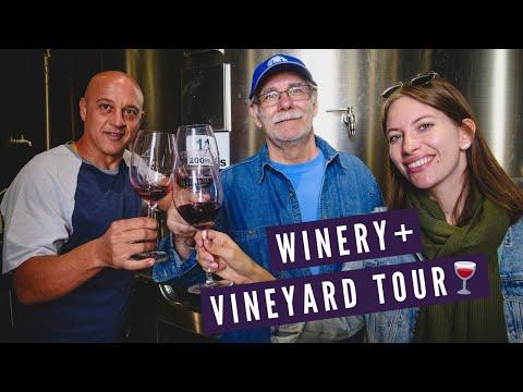 Mendoza WINERY + VINEYARD Tour ?   Visiting BODEGAS LUMINIS in Maipu, Argentina ?