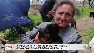 La otra cara de la cuarentena: habitantes de calle refugian a animales abandonados en Bogotá