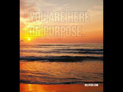 Remember Your Purpose - Billy Cox