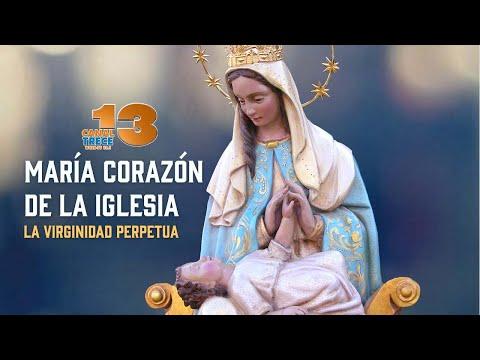 MARIA MADRE DE LA IGLESIA - LA VIRGINIDAD PERPETUA