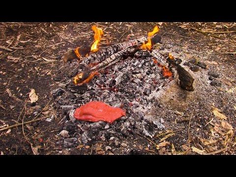 Bushcraft Wildcamp, Primitive Cooking, Duck on Embers, Coffee