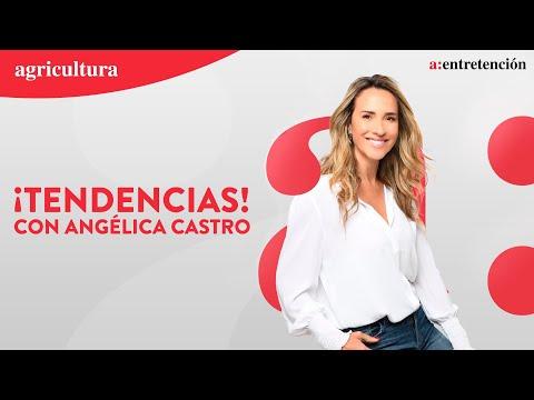 TENDENCIAS CON ANGÉLICA CASTRO - 10 DE JUNIO 2021