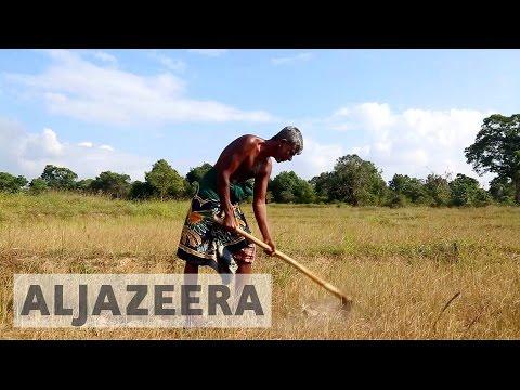 Severe drought hits Sri Lanka farmers