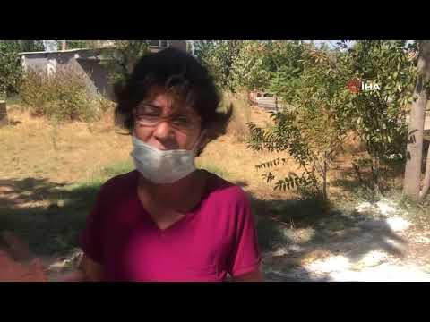 Keşan'da 6 Hayvan Zehirlendi, Gözyaşlarını Tutamayan Mahalleli İsyan Etti
