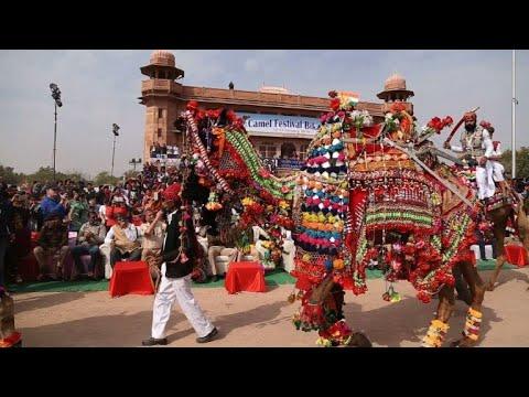 Annual Bikaner camel festival opens in India