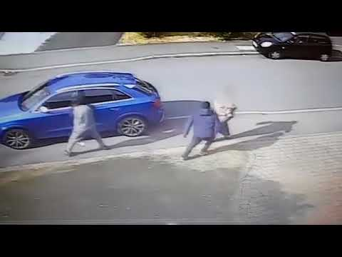 See How A Grandmother Fought Thieves Who Tried To Steal Her Car (Photos, Video)