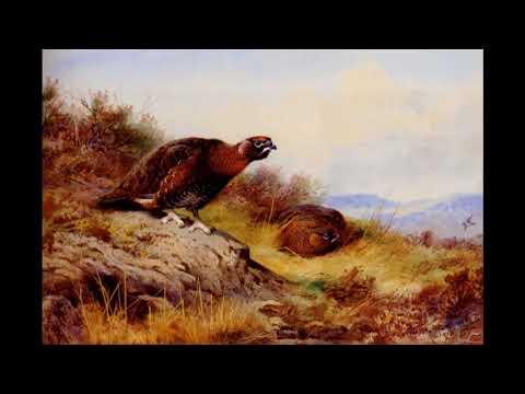 Арчибальд Торберн (Thorburn Archibald) картины великих художников photo