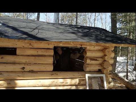 Building a Cedar Sauna in the Forest, Ep 23: Windows and Walls