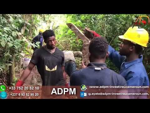 Business Cameroun: les secrets pour l'Achat / Valorisation d'un terrain
