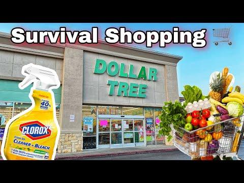 Dollar Tree Survival Shopping B4 Lockdown