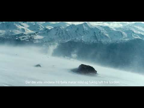 Strandasalami - En renere salamismak