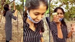 Singer Madhu Priya Plucking Guava Fruit | Funny Video | IG Telugu - IGTELUGU