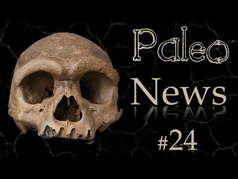 Des plumes dans Jurassic World 3, l'Homme Dragon et un nouvel Homo en Israel