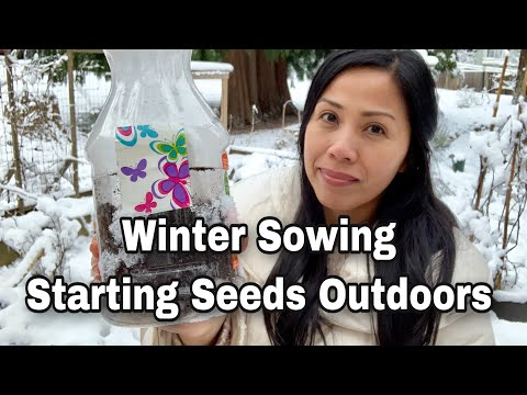 Winter Sowing - Starting Seeds Outdoors