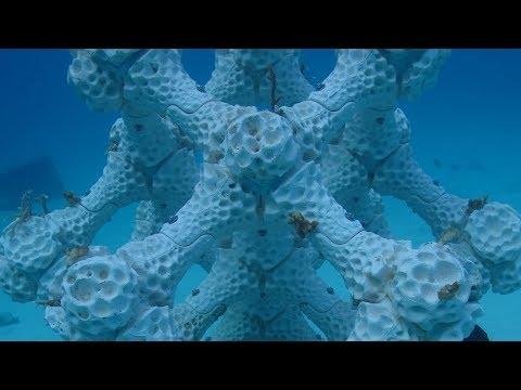 Modular artificial reef system by Alex Goad