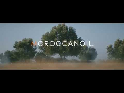 Introducing The Argan Oil Story by Moroccanoil®