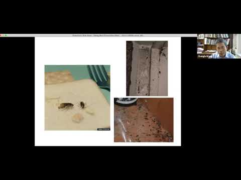 Reducing Pest Infestations in Multifamily Housing