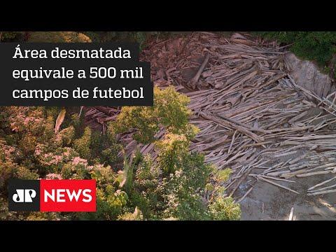Desmatamento na Amazônia cresce 51% nos últimos 11 meses, mostra Imazon
