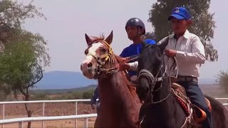 e88b04ccc5 Videos de Carreras de caballos Telepaisa | videos de zacatecas ...